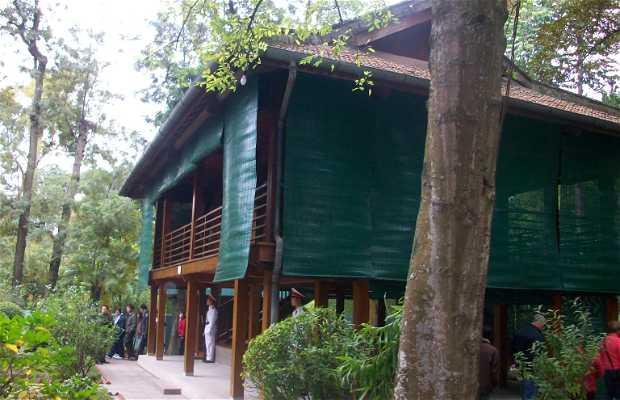 Casa Zancuda