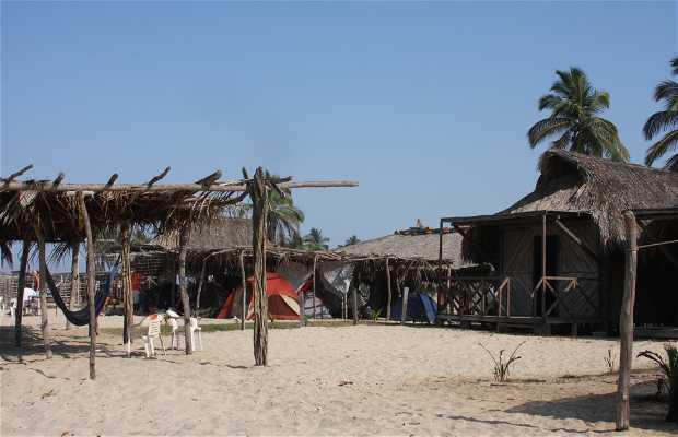 Playa Mata de Mangle