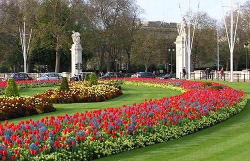 Jardines del Palacio de Buckingham