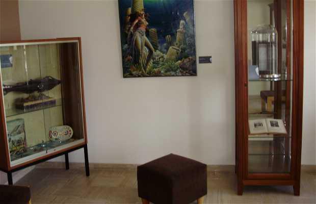 Museo de Julio Verne