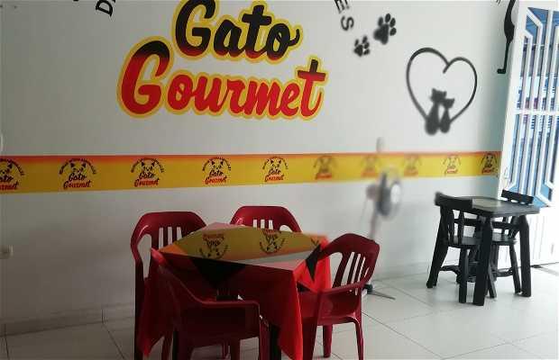 Delicias Internacionales Gato Gourmet