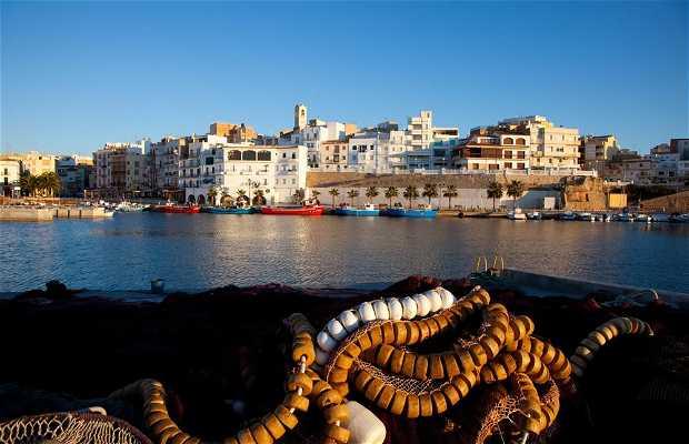 El puerto y la subasta del pescado