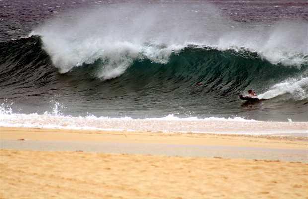 Praia do North Shore