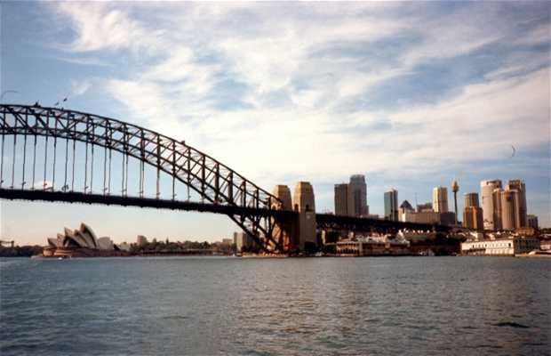 Crucero por el Río Matilda