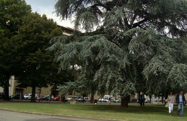Plaza de la Indipendenza