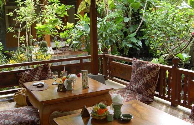Café Wayan