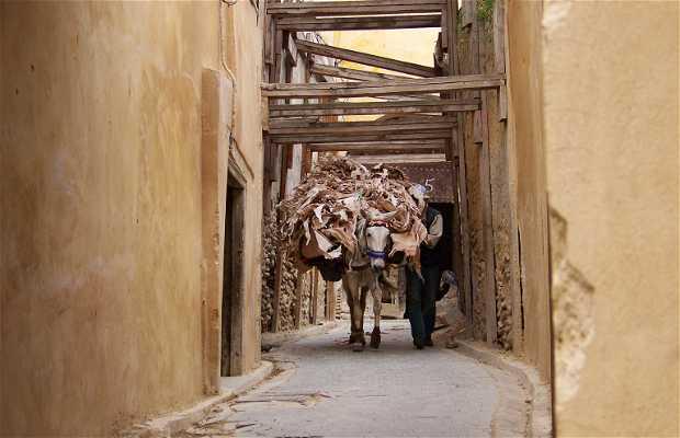 La Medina di Fez