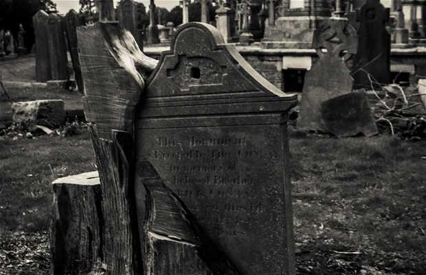 Cementerio Glasvenin
