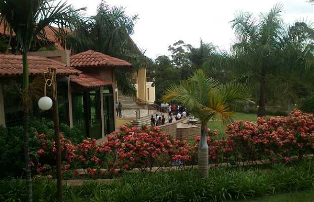 Casa de Campo Royal Palm Plaza