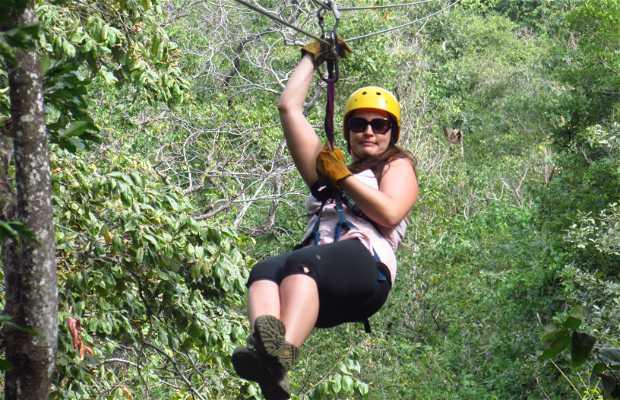 Pura Aventura Canopy Tours