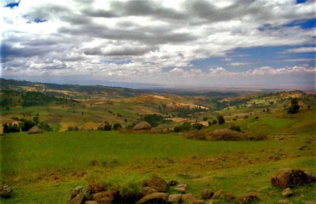 Parque Nacional de Dinsho