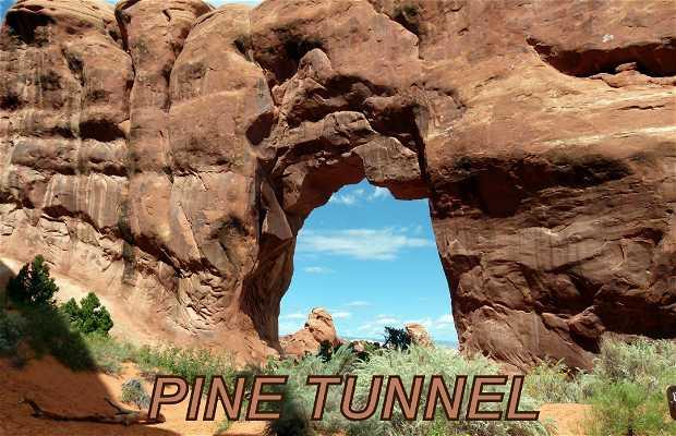 Landscape Arch nello Utah