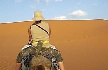 The desert in Hassi Labied