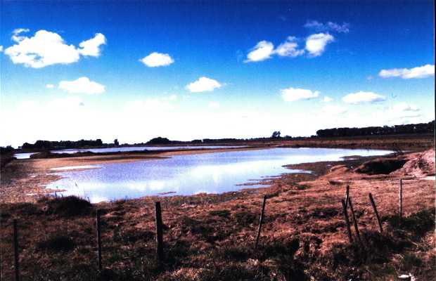 Le Lac Uribelarrea