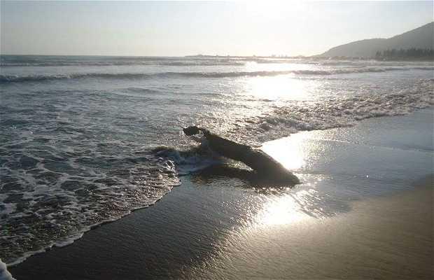 Praia do Mar Grosso - SC