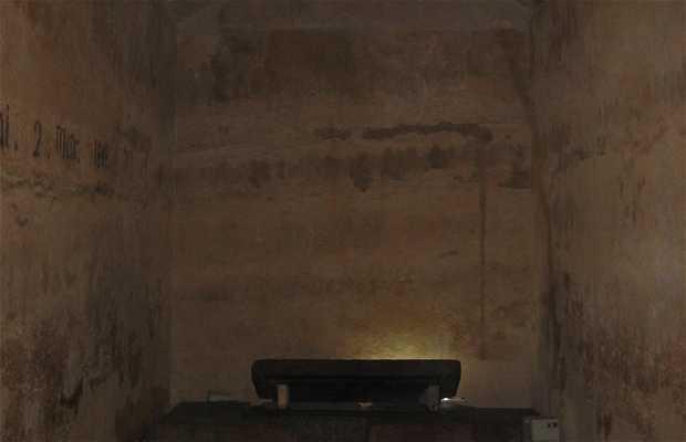 Pyramide de Khéphren et sphinx