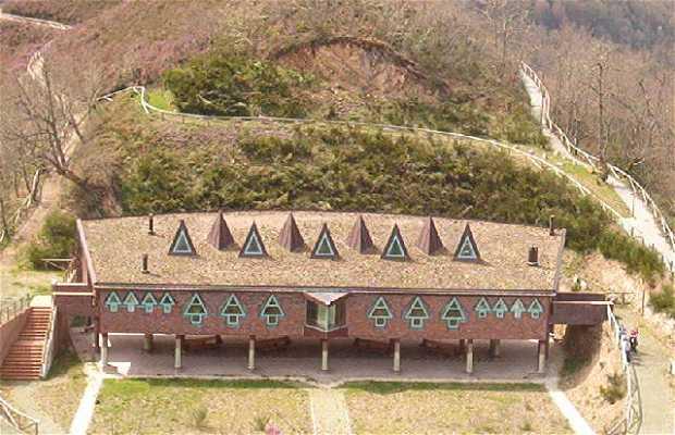 Muniellos Integral Reserve