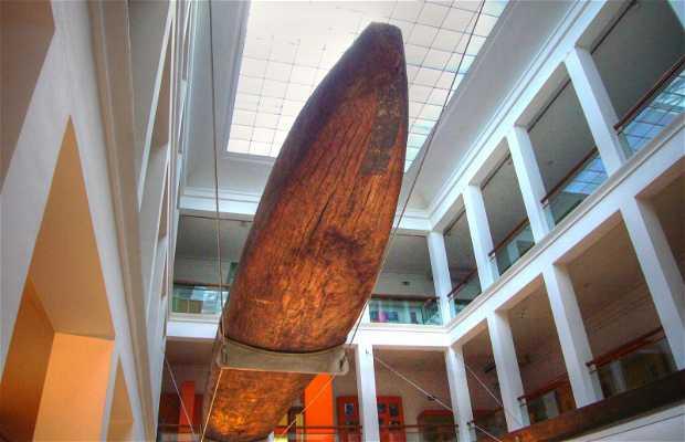 Musée national d'anthropologie de Madrid