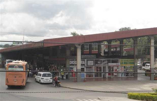 Terminal de Bus
