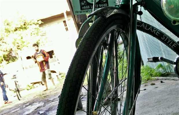 Araiwah Chiang Mai Bicycle City Tour