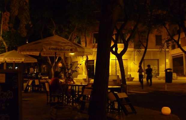 Bar Palapa (Santa Catalina)