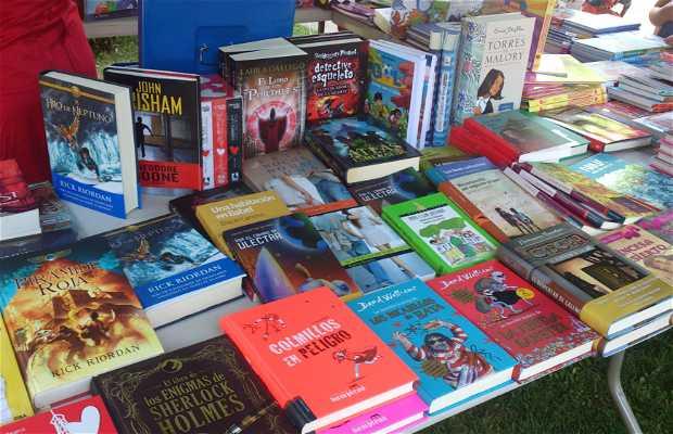 Feria del libro de Valencia de Don Juan