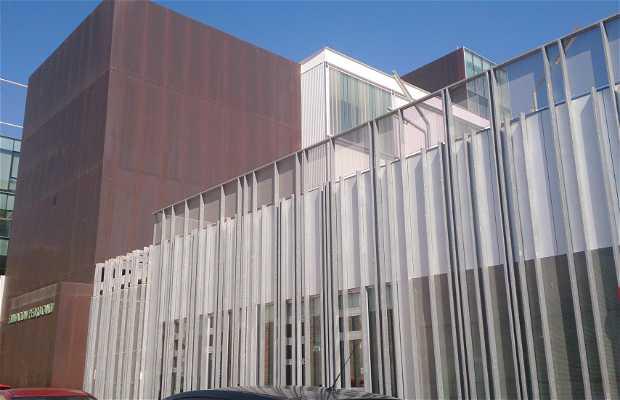 Centro de arte de Blanca