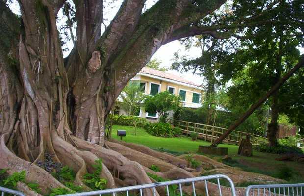 Jardin Botaniqu