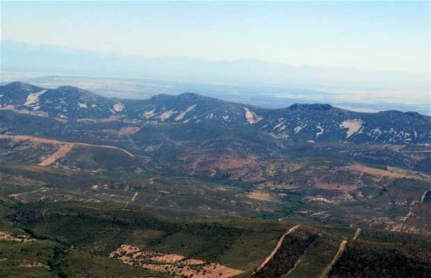 Pico Carbonero