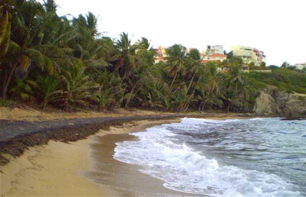 Wild Beach (Palmas del Mar)