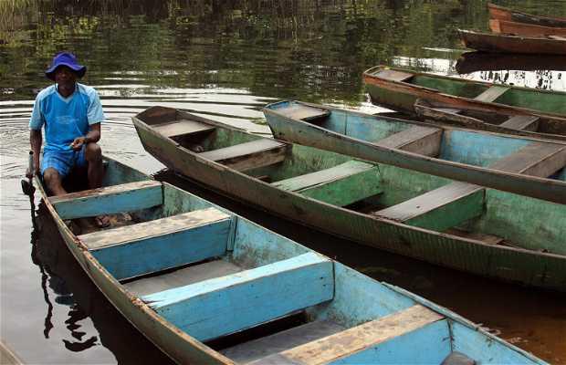 Río Marimbus