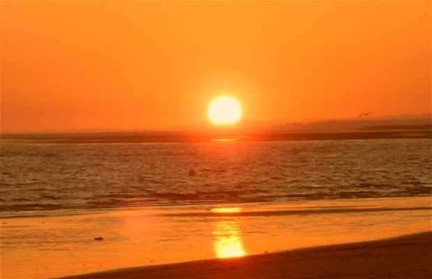 Playas de Punta Umbría
