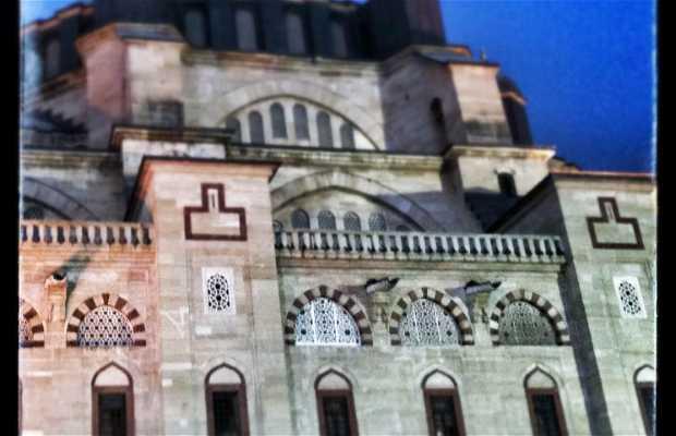 Mosque Selimiye