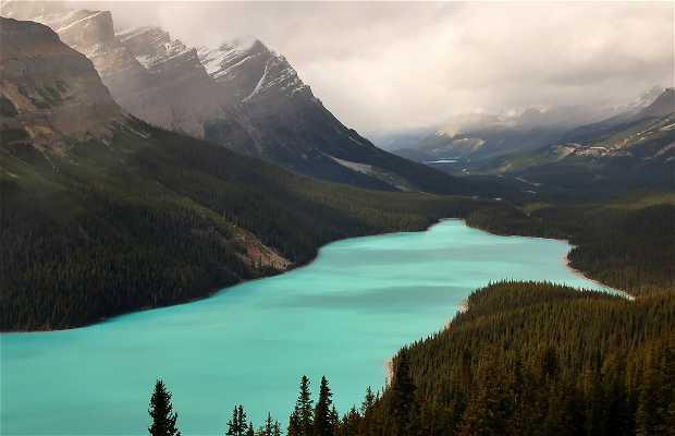 Montagne Rocciose canadesi