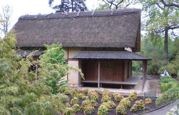 Casa minka