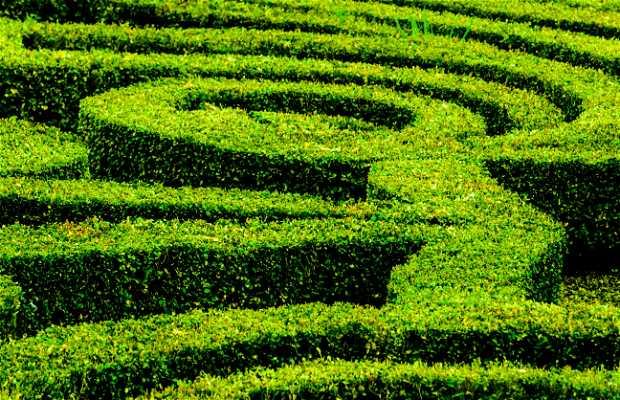 Jardines de Villa Lante