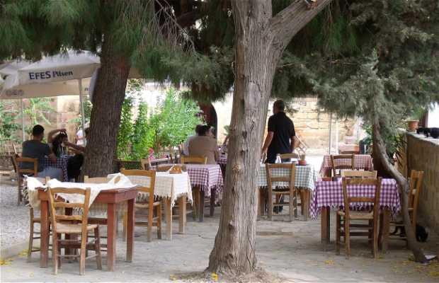 Restaurante Amigos de los Museos