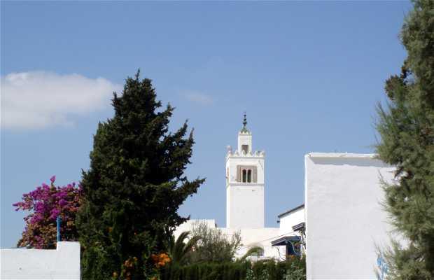 Mirador Sidi Chabaane