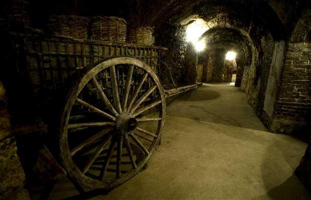 Bodegas subterráneas en el centro de Aranda de Duero