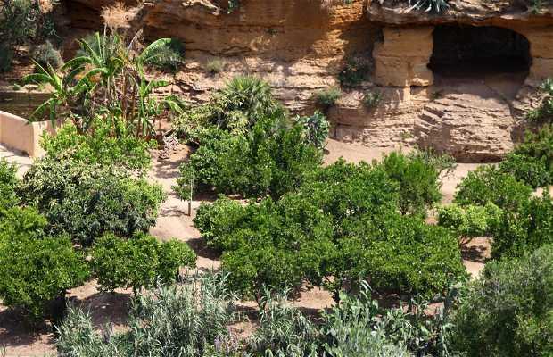 Giardino di Kolymbetra