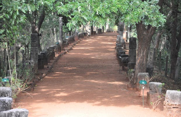 De Nalanda a Naula