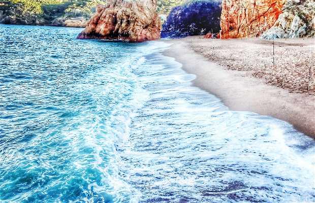 Playa Illa Roja