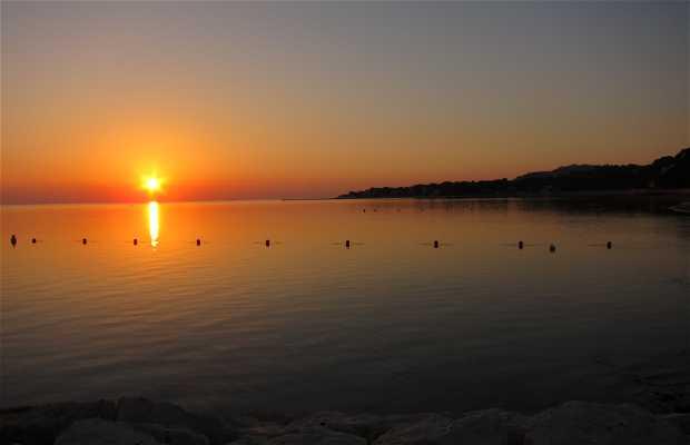 Playa Marineta