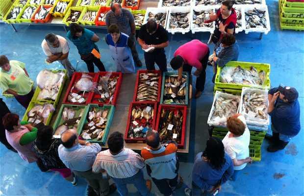 Market of Fishermen Finistère