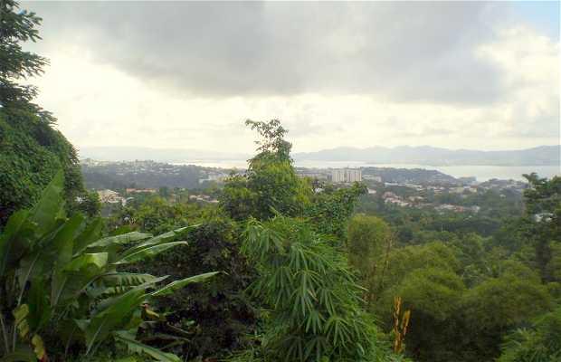 Point de vue de Balata