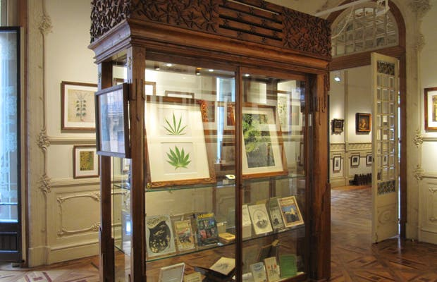 Museo Hash Marihuana Hemp & Cáñamo