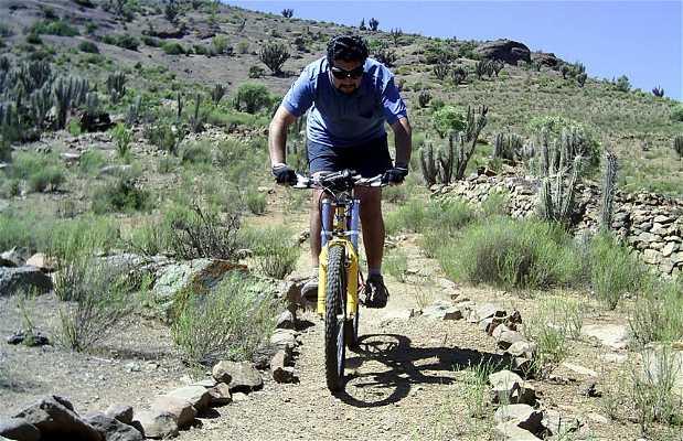Bicicleta en San Pedro de Pichasca