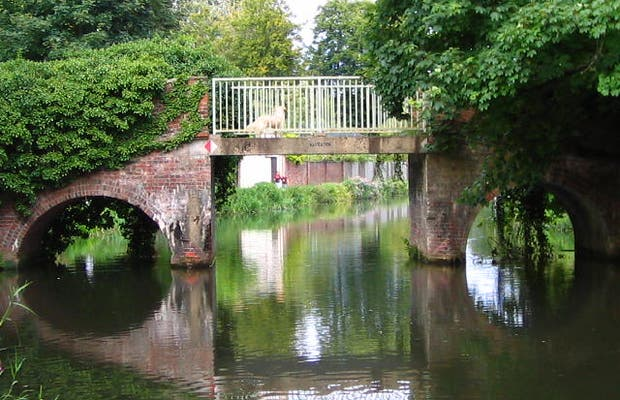 Puente Trowers