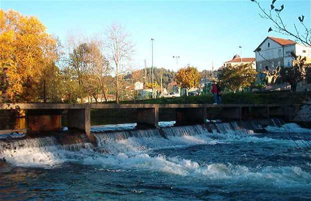 Tea River
