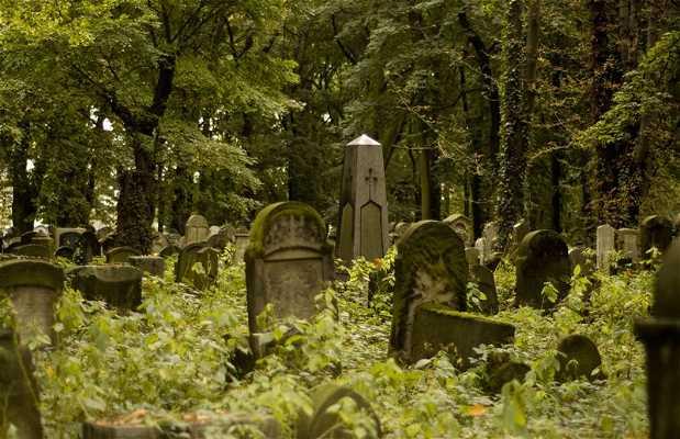 Nuevo Cementerio Judío